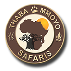 South African Hunting Safaris Logo Image
